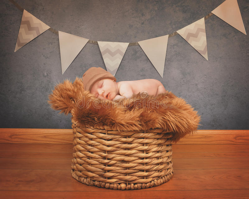 Retrato de un bebé recién nacido que duerme en cesta fotografía de archivo libre de regalías