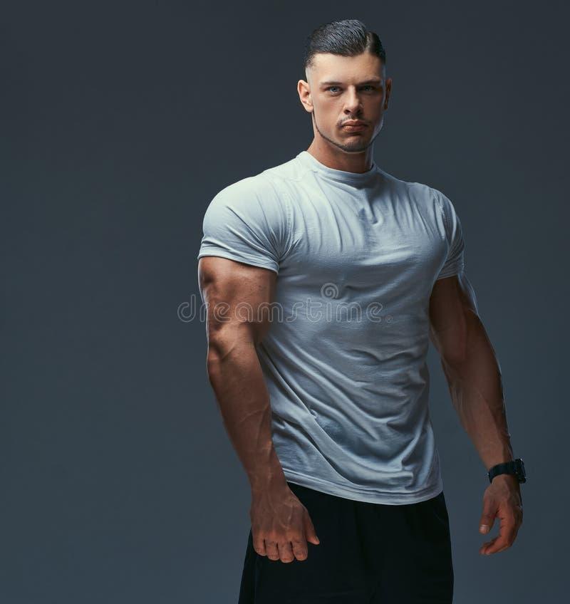 Retrato de un culturista hermoso muscular en la ropa de deportes que presenta en un estudio Aislado en un fondo gris fotografía de archivo