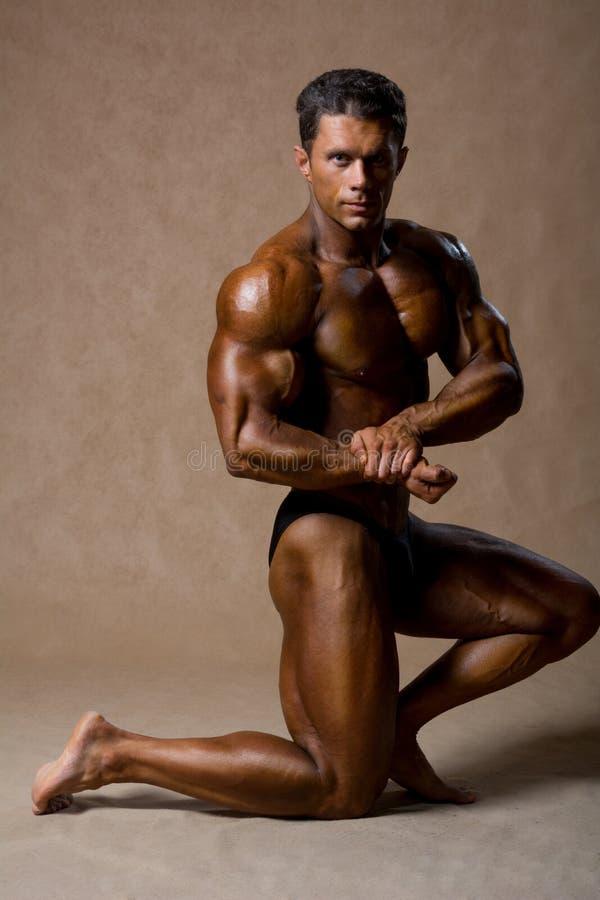 Retrato de un culturista muscular hermoso que presenta sobre backgro fotografía de archivo libre de regalías