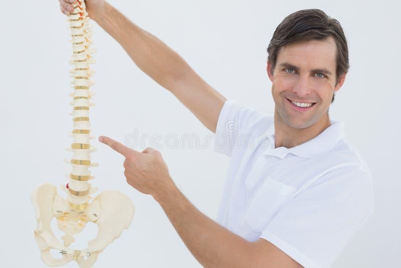 Retrato de un doctor de sexo masculino sonriente con el modelo esquelético fotografía de archivo libre de regalías
