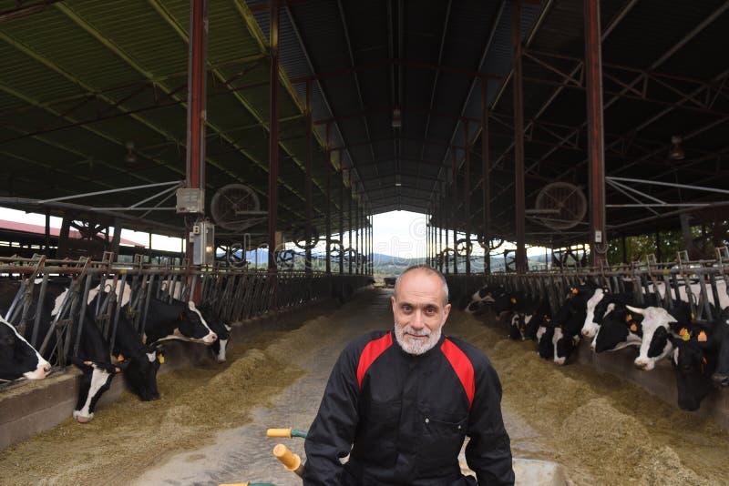 Retrato de un hombre en una granja de vacas foto de archivo libre de regalías