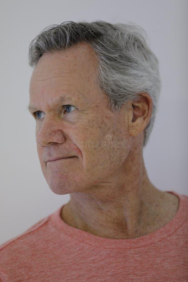 Retrato de un hombre maduro con el pelo gris imagen de archivo