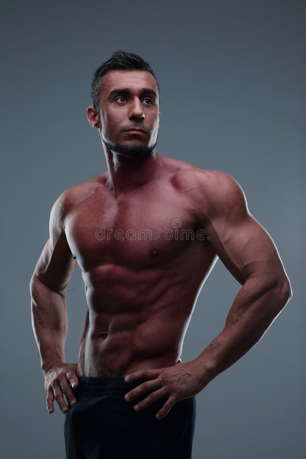 Retrato de un hombre muscular hermoso imágenes de archivo libres de regalías