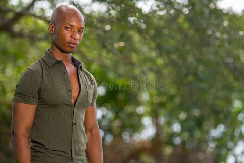 Retrato de un hombre negro de 30 años hermoso que presenta con el hombro hacia cámara imagen de archivo libre de regalías