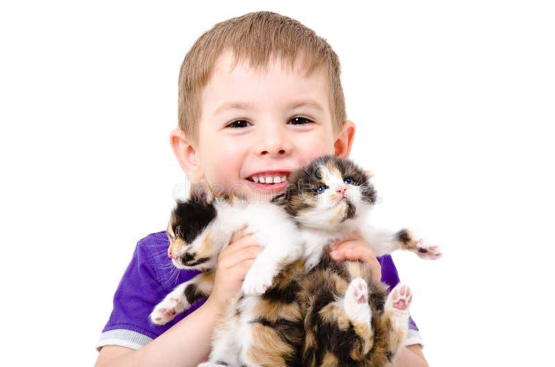 Retrato de un niño feliz con los gatitos en las manos imagen de archivo libre de regalías