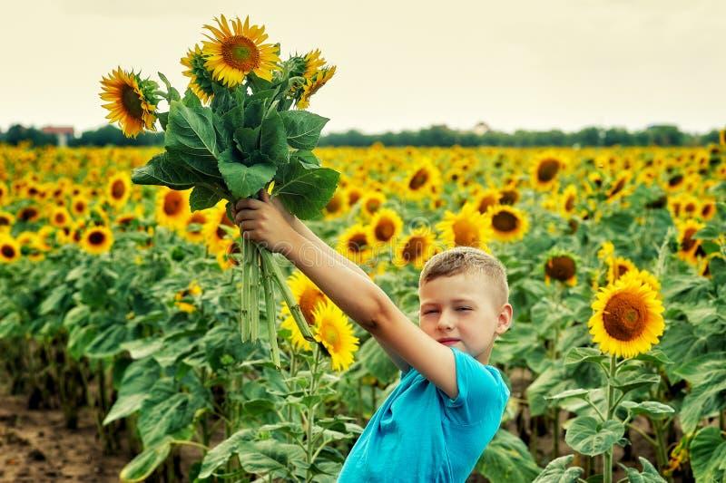 Retrato de un niño pequeño en un campo con un girasol floreciente imagen de archivo libre de regalías
