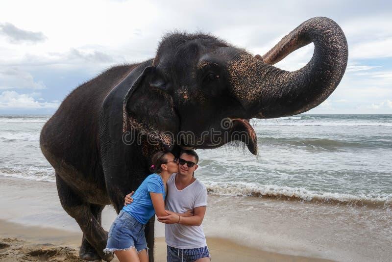 Retrato de un par joven feliz con un elefante en el fondo de una playa tropical del océano La muchacha besa al individuo fotos de archivo