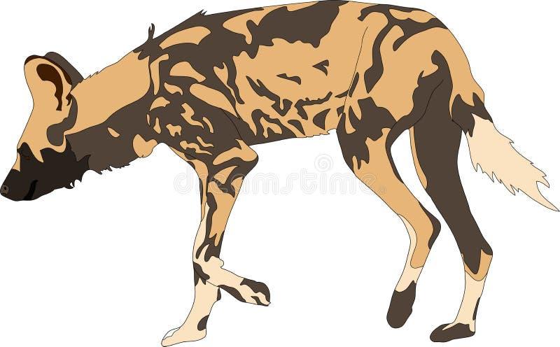 Retrato de un perro salvaje hambriento y del firerce ilustración del vector