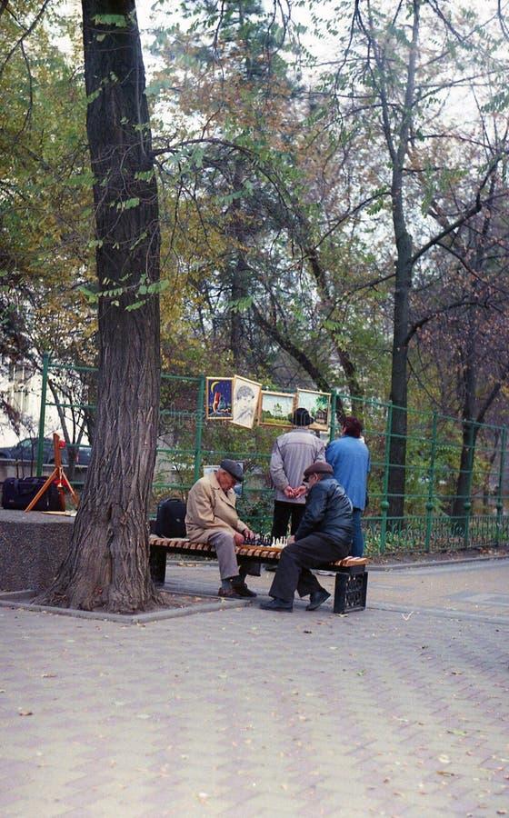 Retrato de un viejo hombre que juega a ajedrez en el parque fotos de archivo libres de regalías