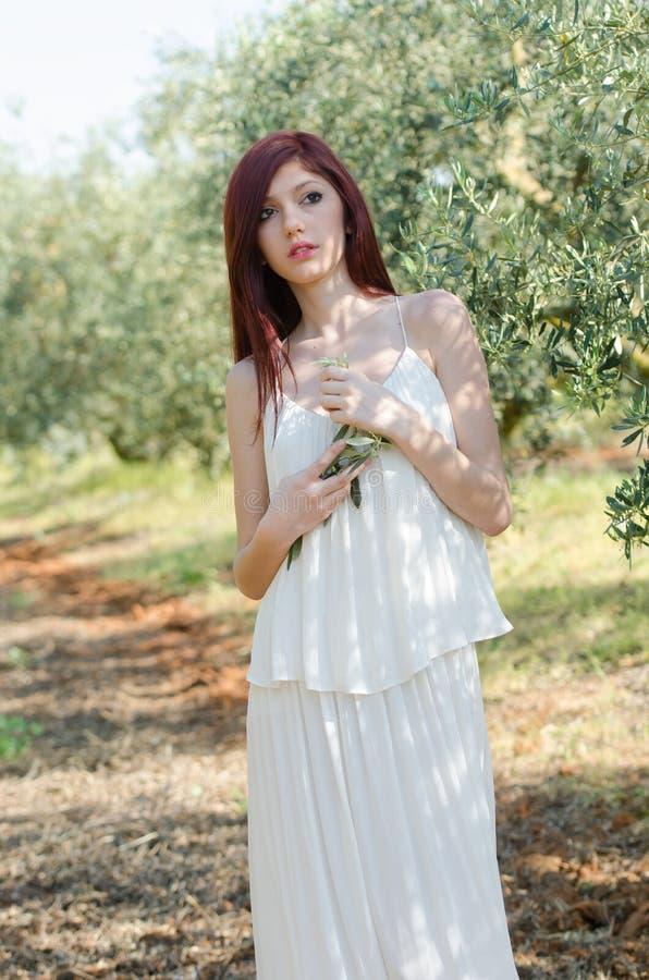 Retrato de una muchacha con el vestido blanco en la arboleda verde oliva imagen de archivo