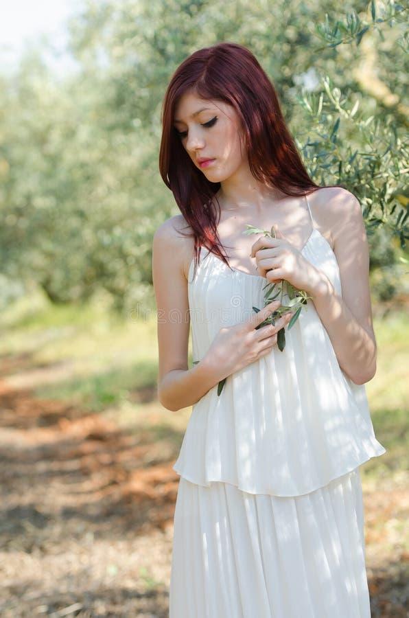 Retrato de una muchacha con el vestido blanco en la arboleda verde oliva foto de archivo libre de regalías