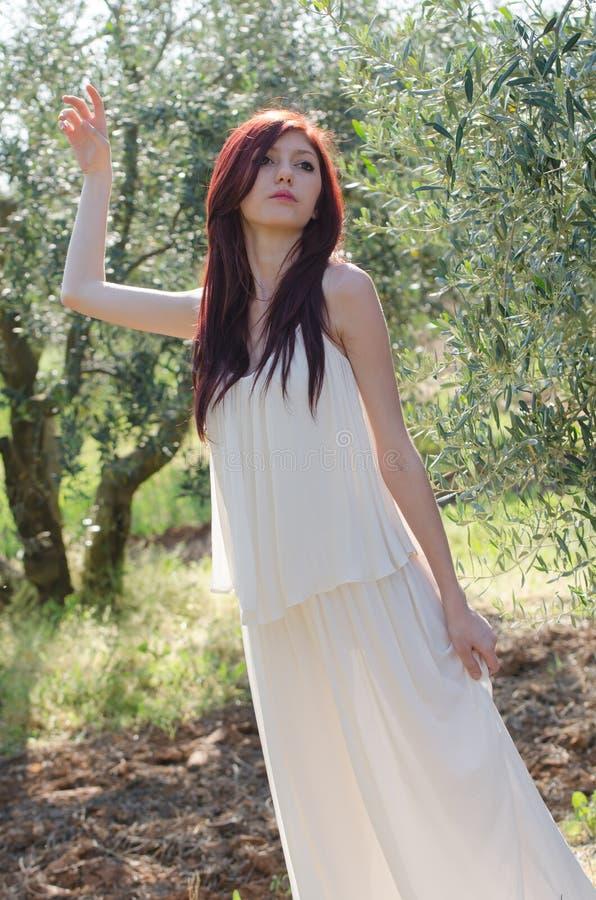 Retrato de una muchacha con el vestido blanco en la arboleda verde oliva fotografía de archivo