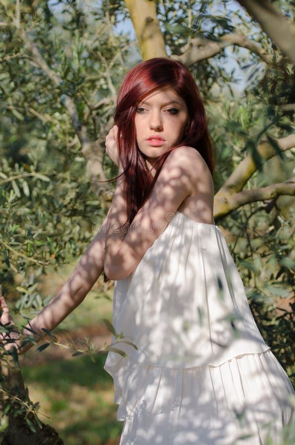 Retrato de una muchacha con el vestido blanco en la arboleda verde oliva fotografía de archivo libre de regalías