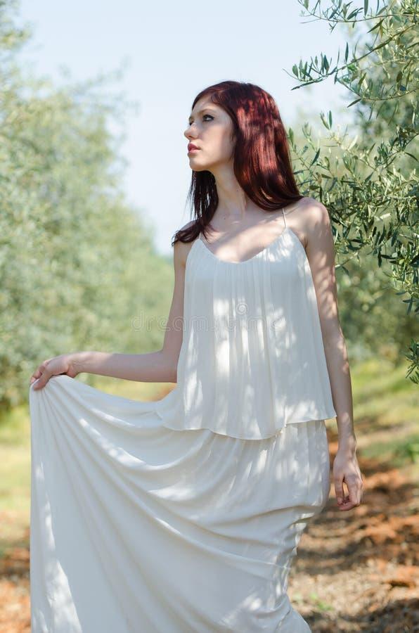 Retrato de una muchacha con el vestido blanco en la arboleda verde oliva imagen de archivo libre de regalías