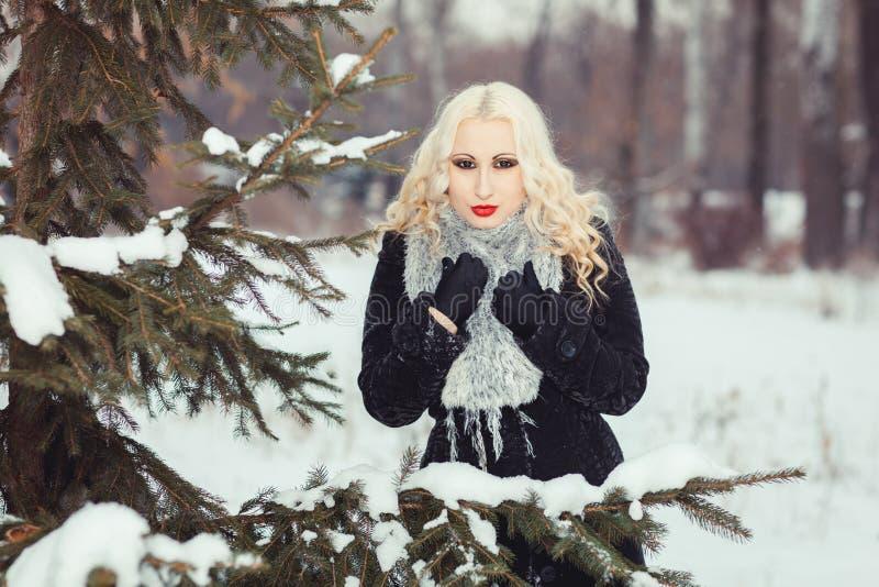Retrato de una muchacha en bosque del invierno fotografía de archivo libre de regalías