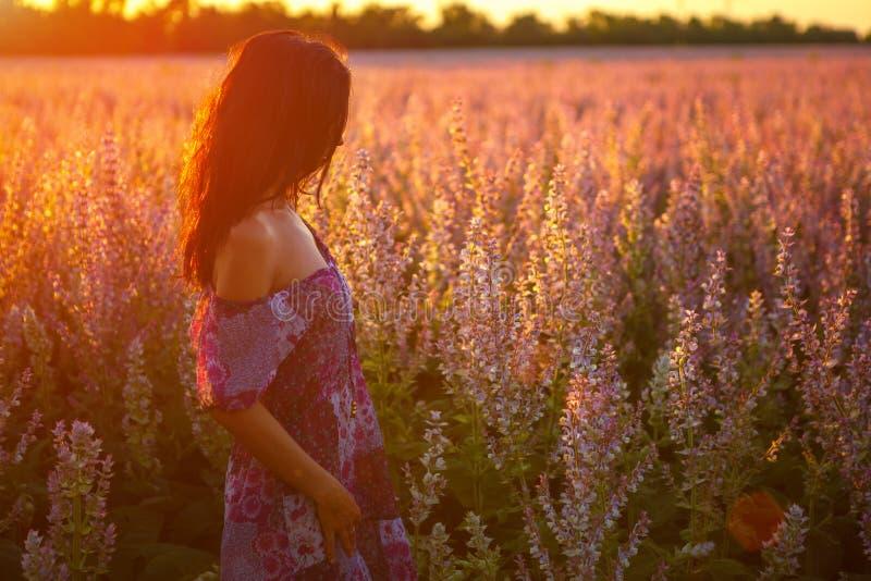 Retrato de una muchacha en un campo floreciente en el sol en la puesta del sol, el concepto de relajación imagen de archivo