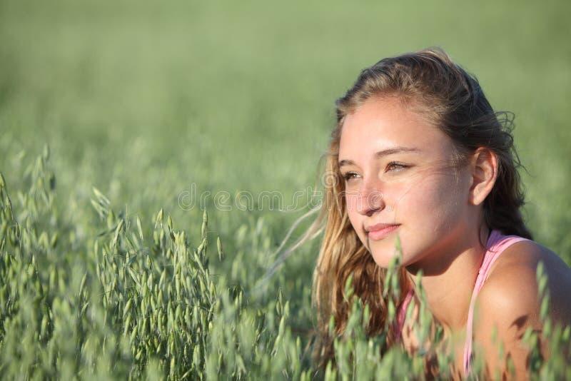 Retrato de una muchacha hermosa del adolescente en un prado de la avena foto de archivo libre de regalías