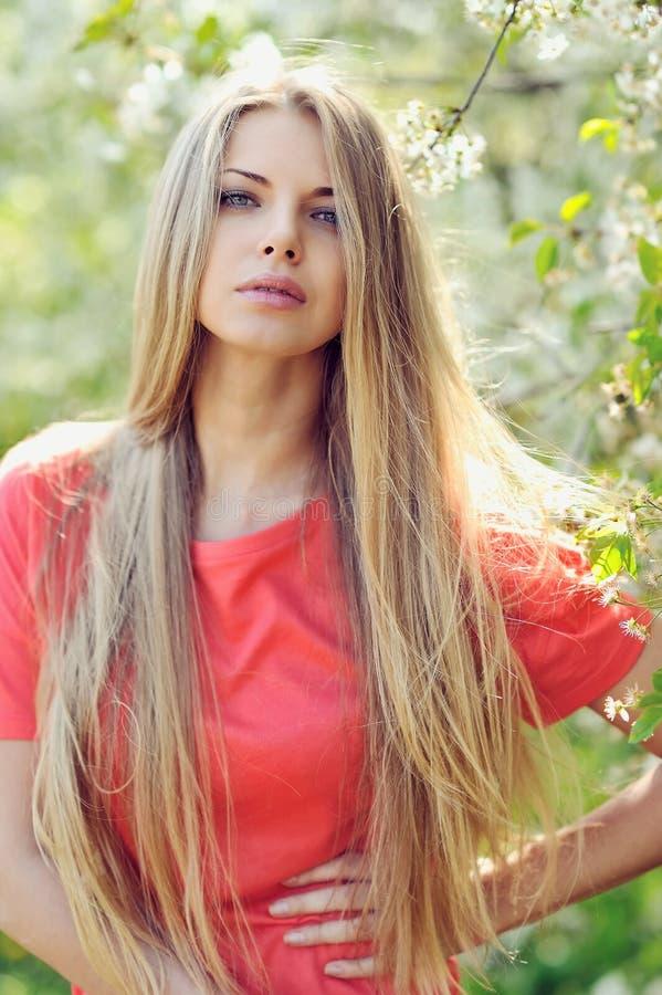 Retrato de una muchacha hermosa en primavera en un día soleado imagen de archivo