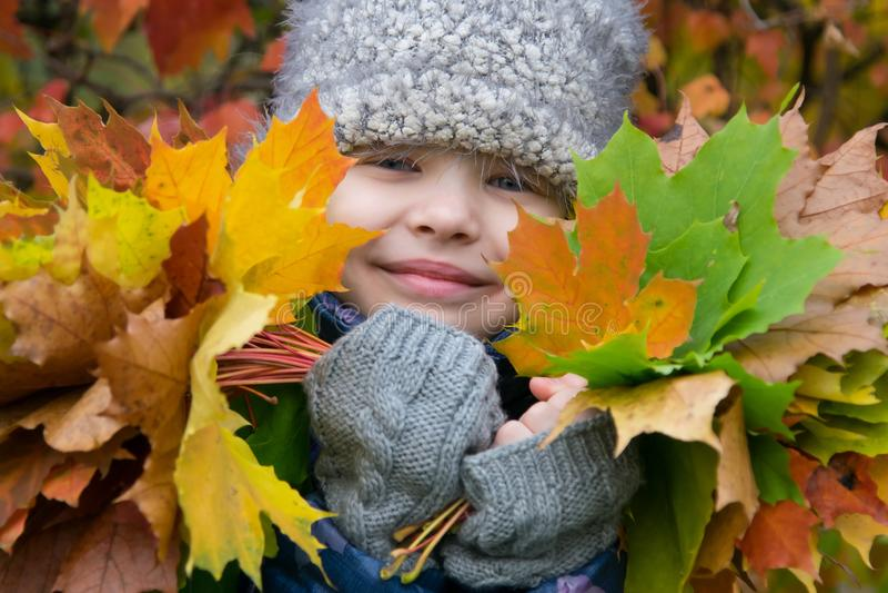 Retrato de una muchacha rodeada por la naturaleza del otoño que sostiene las hojas caidas coloridas fotografía de archivo