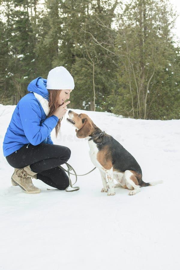 Retrato de una mujer bastante joven con su perro casero foto de archivo