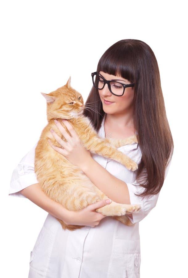 Retrato de una mujer hermosa que sostiene el gato rojo imagen de archivo