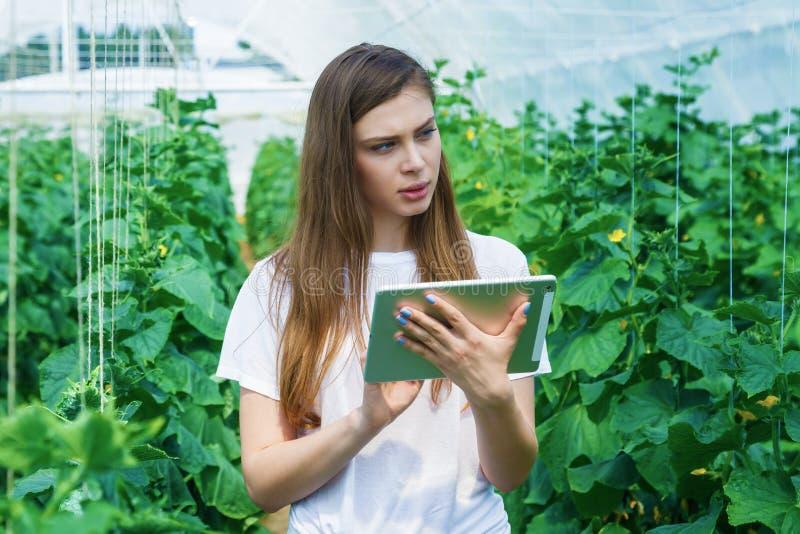 Retrato de una mujer joven en el trabajo en invernadero fotos de archivo libres de regalías