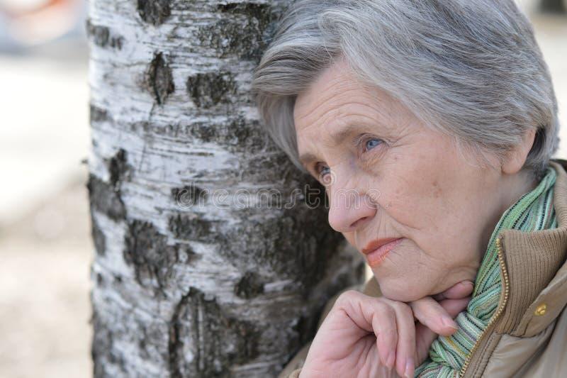 Retrato de una mujer mayor fotos de archivo libres de regalías