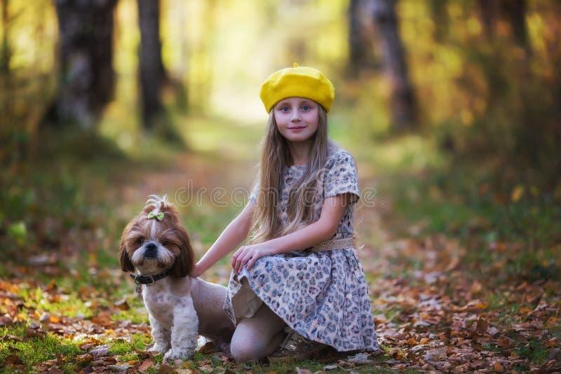 Retrato de una niña en una boina amarilla con un perro del tsu de la mierda contra el contexto de un bosque otoñal fotografía de archivo