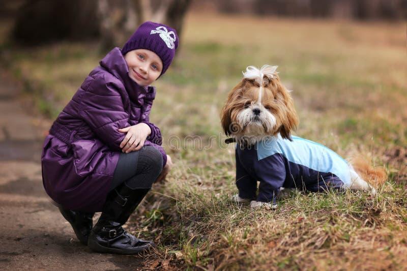 Retrato de una niña linda con su perro casero fotografía de archivo libre de regalías