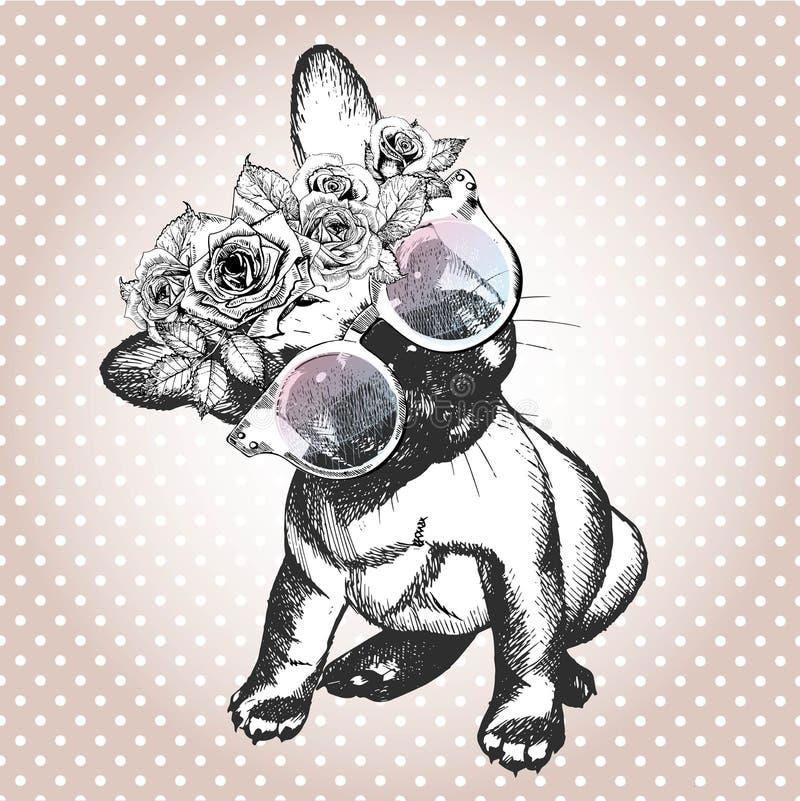 Retrato de Vecotr del perro, llevando la guirnalda y las gafas de sol florales Raza del dogo francés stock de ilustración