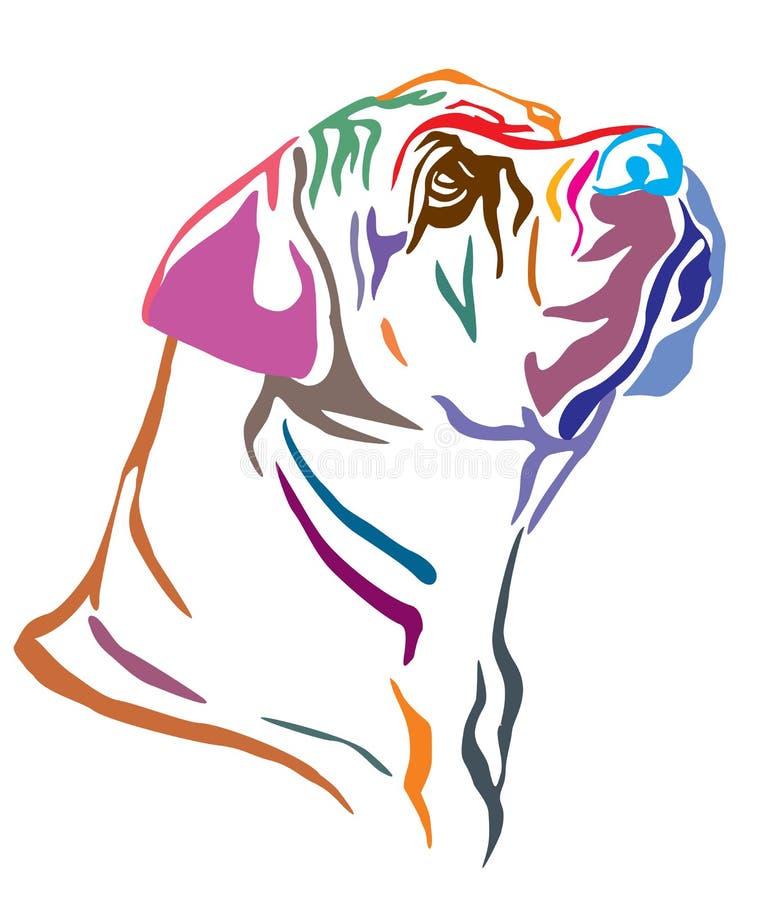 Retrato decorativo colorido da ilustração do vetor do cão de Boerboel ilustração royalty free