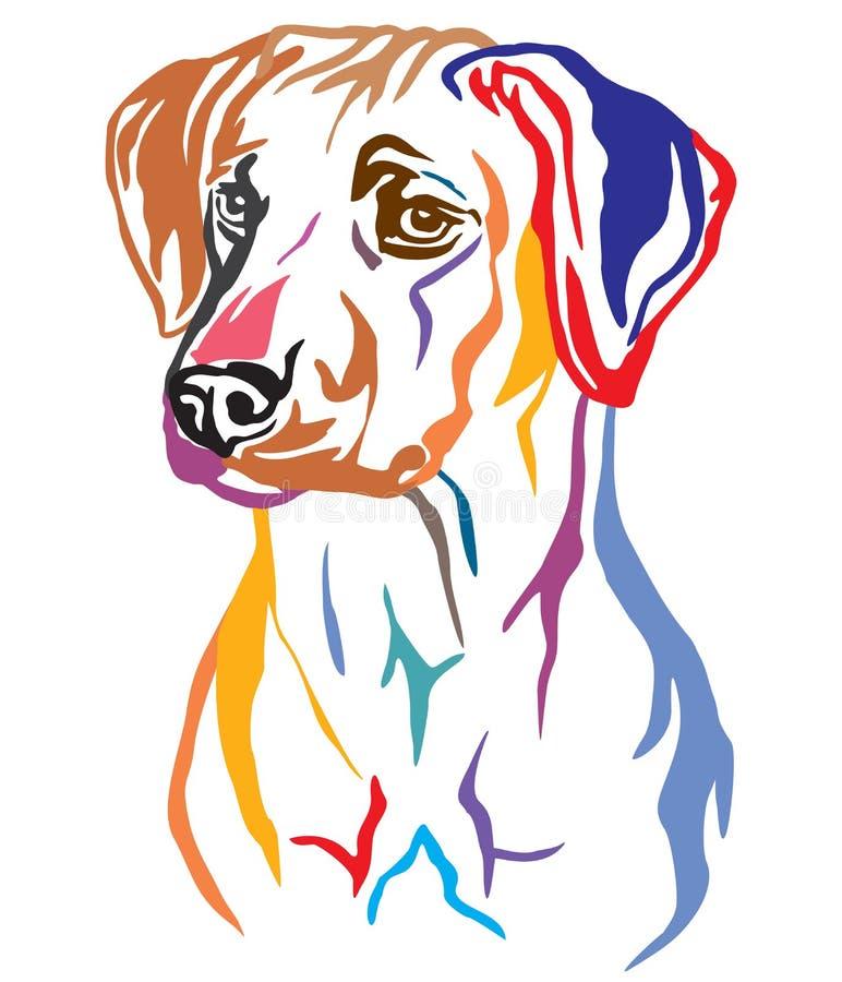 Retrato decorativo colorido da ilustração do vetor do cão de Rhodesian Ridgeback ilustração do vetor