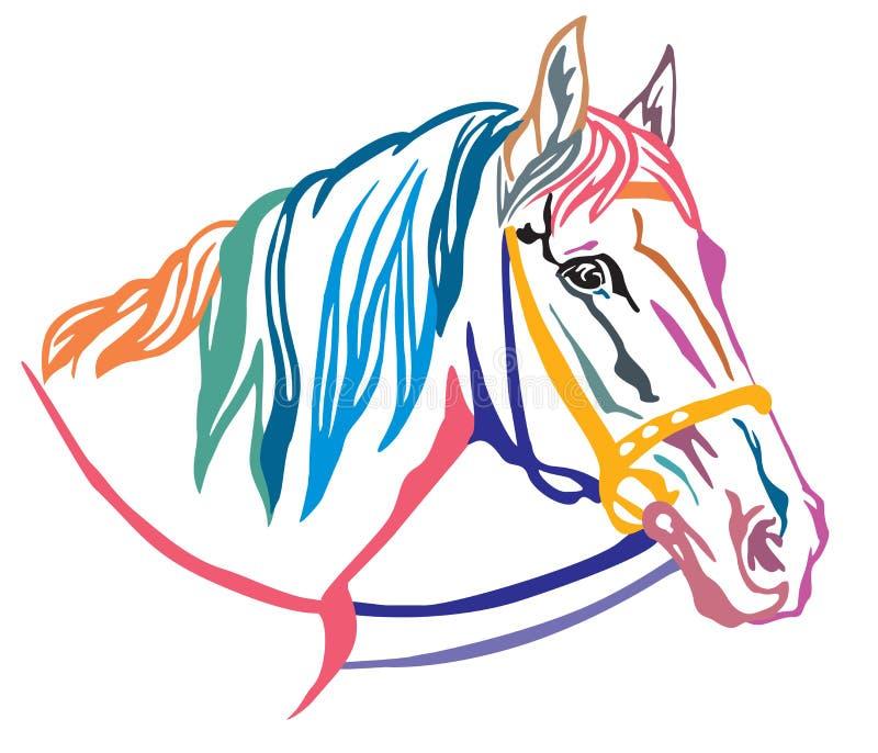 Retrato decorativo colorido da ilustração 5 do vetor do cavalo ilustração do vetor