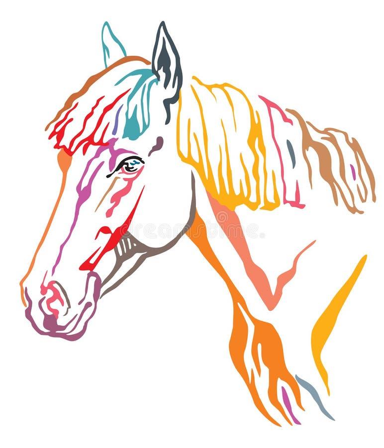 Retrato decorativo colorido da ilustração 2 do vetor do cavalo ilustração stock