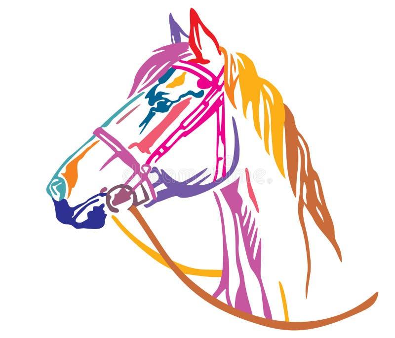 Retrato decorativo colorido da ilustração 6 do vetor do cavalo ilustração do vetor