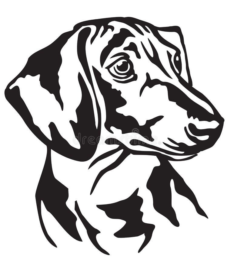 Retrato decorativo da ilustração do vetor do bassê do cão ilustração do vetor