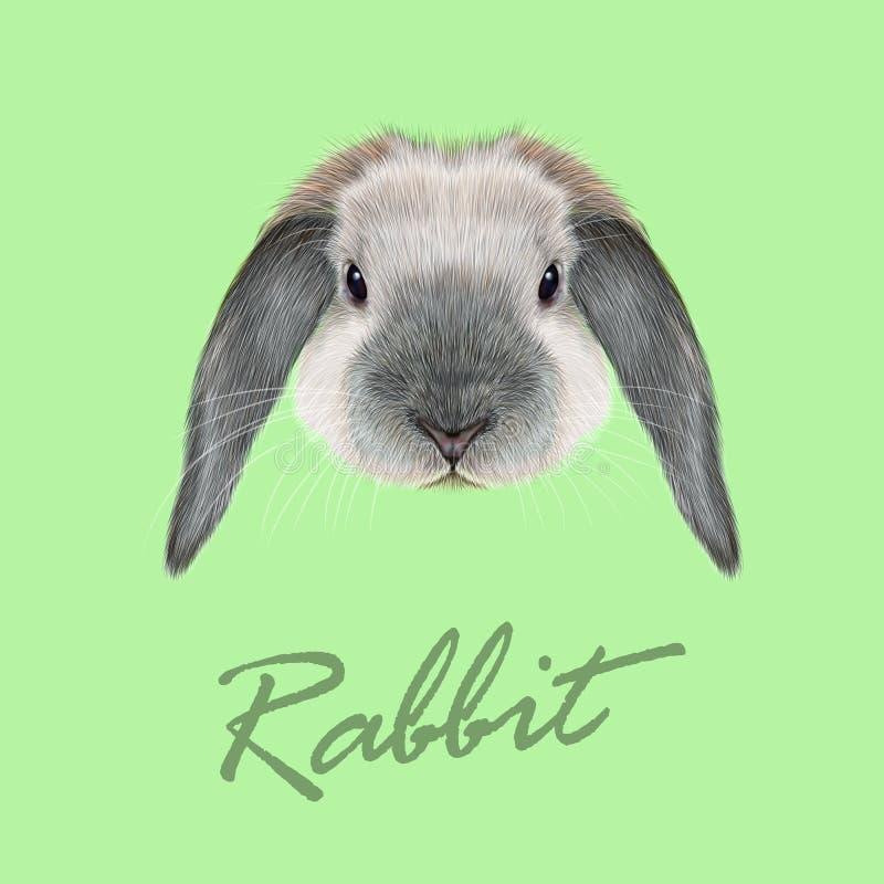 Retrato del animal del conejo stock de ilustración