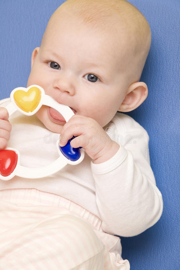 Retrato del bebé imágenes de archivo libres de regalías