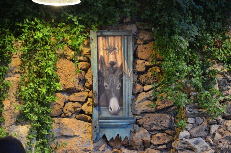 Retrato del burro en la pared foto de archivo libre de regalías