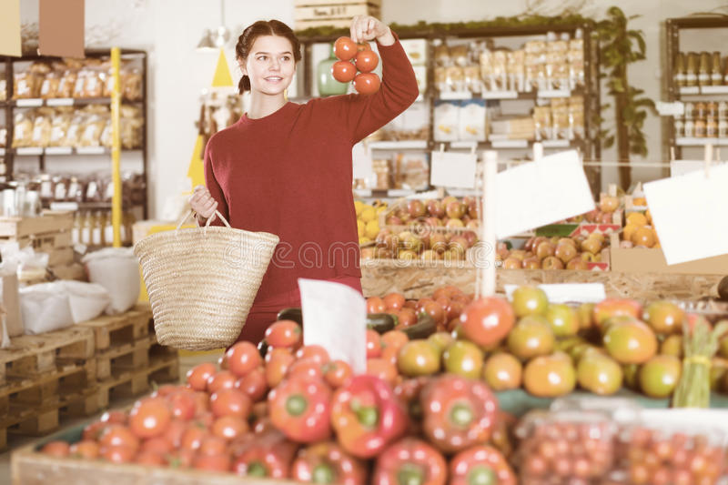 Retrato del cliente femenino joven atractivo que selecciona los tomates imagenes de archivo