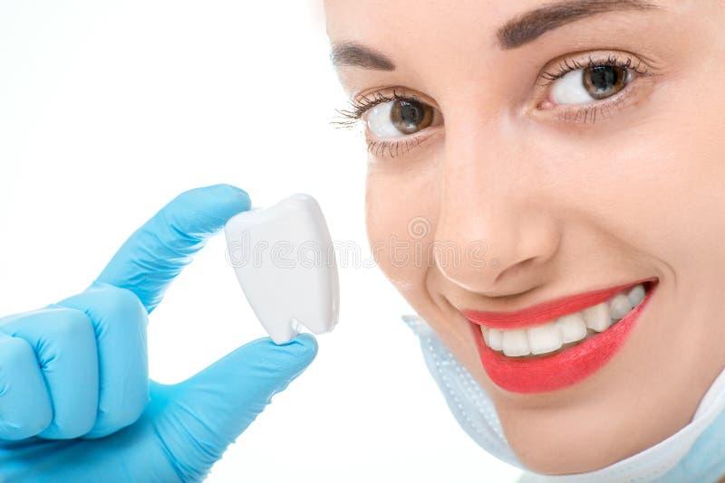 Retrato del dentista con el diente en el fondo blanco fotografía de archivo
