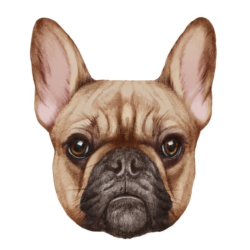 Retrato del dogo francés stock de ilustración