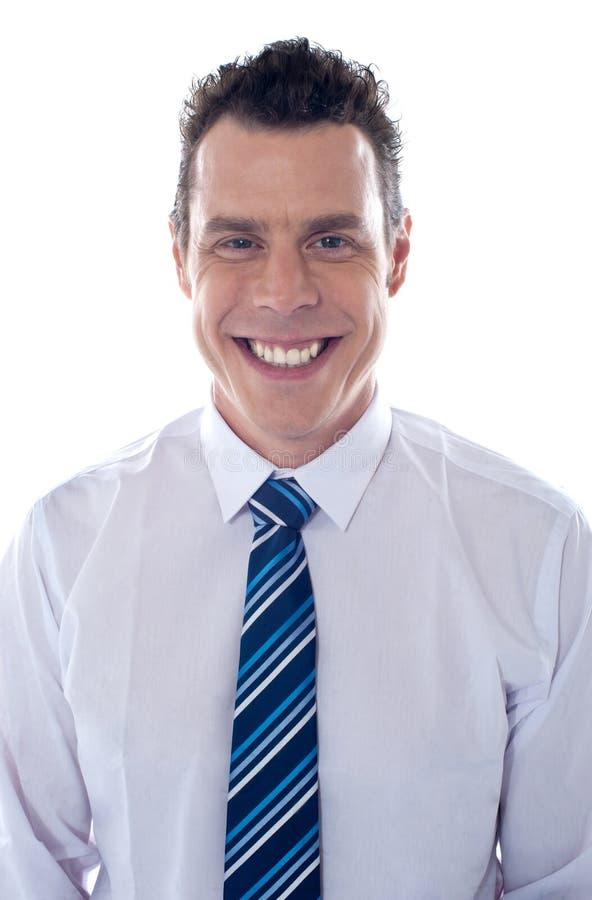 Retrato del ejecutivo de sexo masculino hermoso foto de archivo