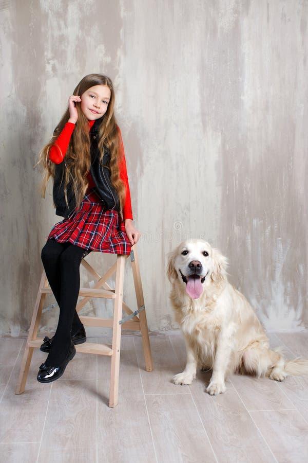 Retrato del estudio de una muchacha con un perro en un fondo gris fotografía de archivo libre de regalías