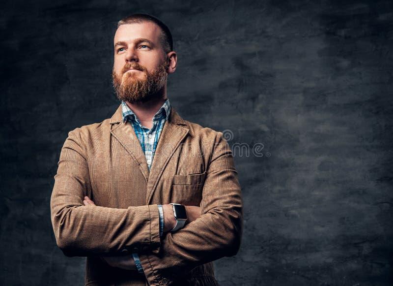 Retrato del estudio del varón barbudo del pelirrojo fotos de archivo libres de regalías
