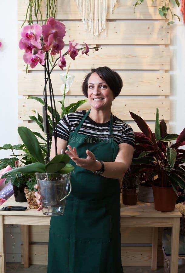 Retrato del florista de la mujer con phalaenopsis de la orquídea en delantal y herramienta en floristería fotografía de archivo libre de regalías