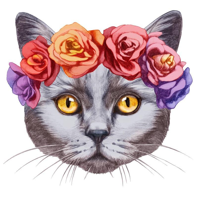 Retrato del gato de británicos Shorthair con la guirnalda principal floral stock de ilustración