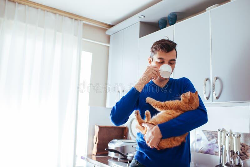 Retrato del gato hermoso de la tenencia del hombre joven y del t? de consumici?n en la cocina foto de archivo libre de regalías