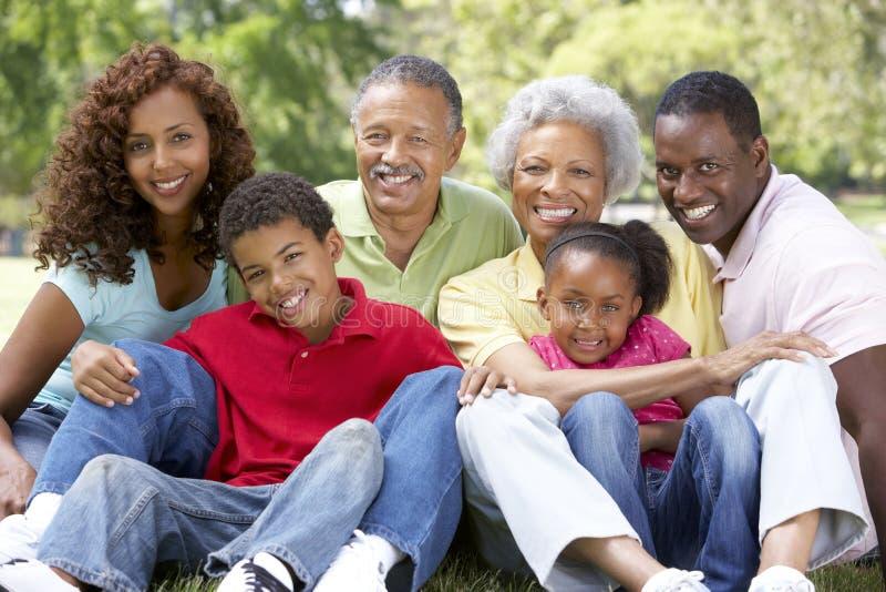 Retrato del grupo de la familia extensa en parque imagenes de archivo