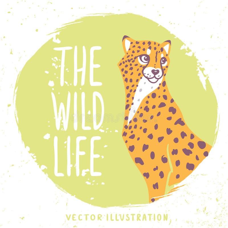 Retrato del guepardo libre illustration